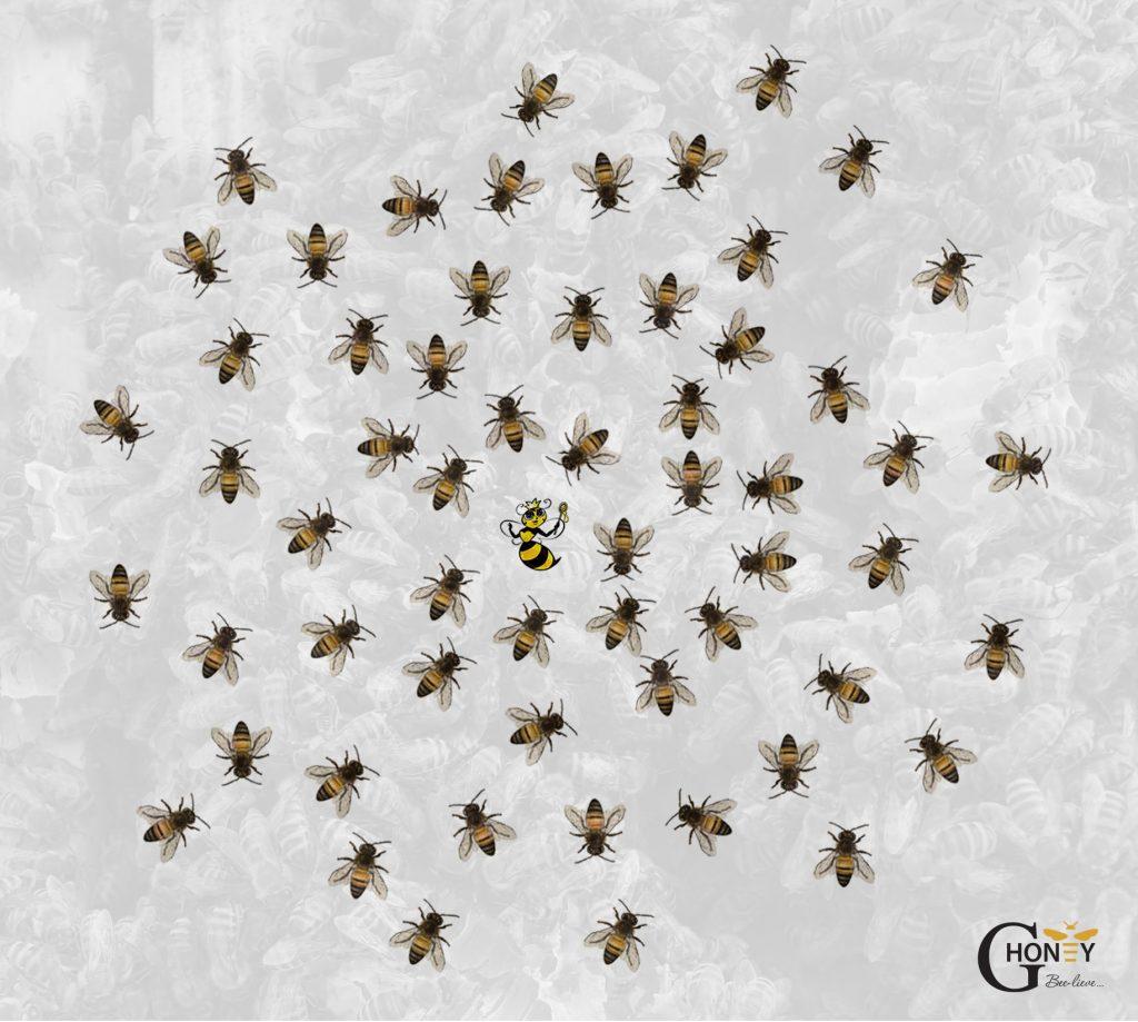 пчелите в кошера при нормална температура