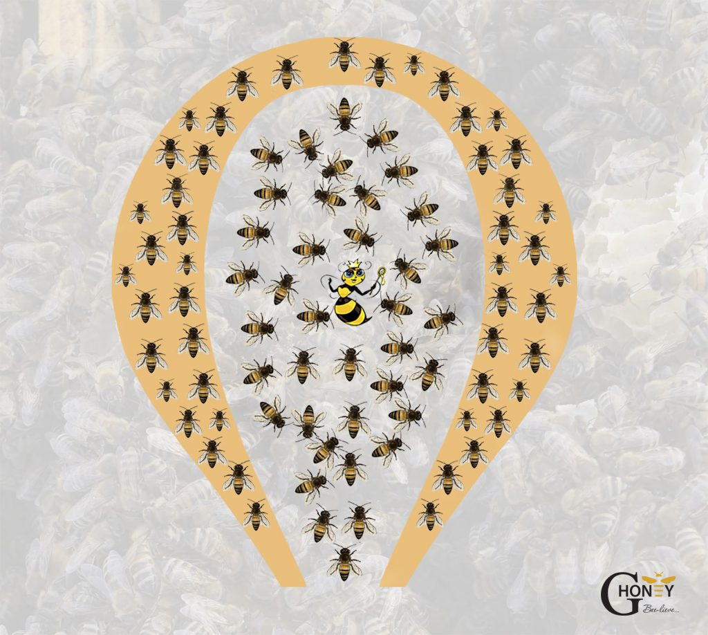 Пчелите при продължително застудяване