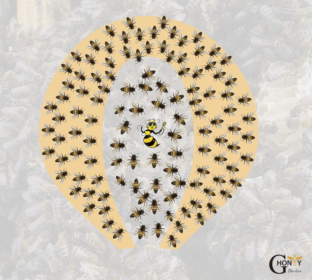 пчелите при под 5 градуса