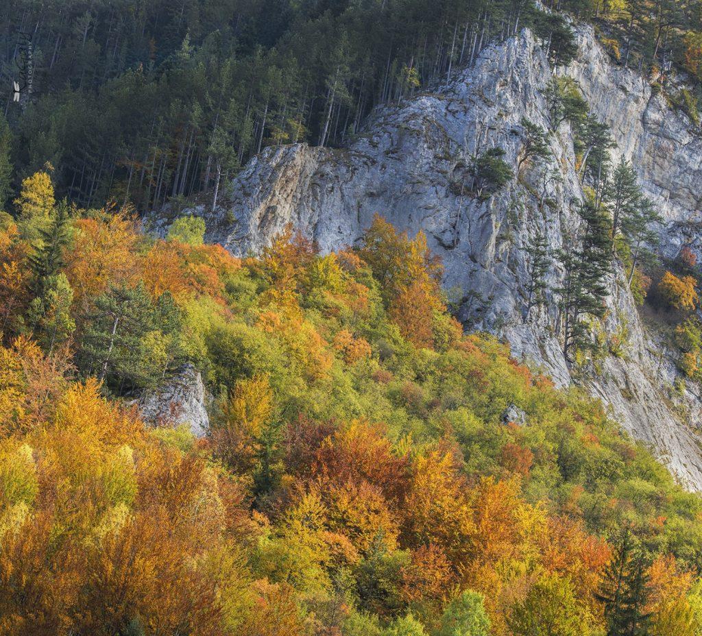 Гледка в началото на Дяволската екопътека в Родопите